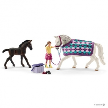 Забота о лошадях Липиццанер 72130